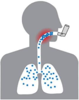 avhc lungs inhaler